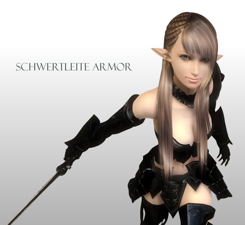 Schwertleite Armor