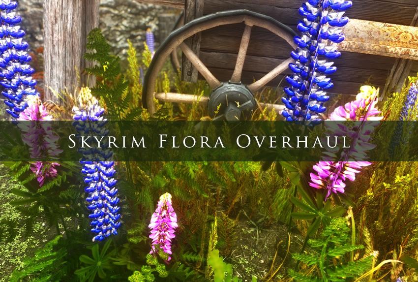 how to make overhaul mod skyrim