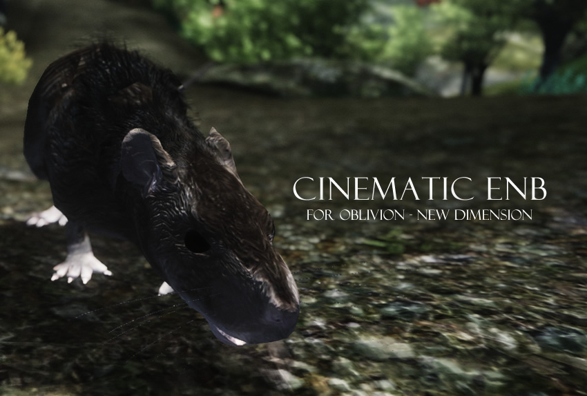 Cinematic ENB for Oblivion – New Dimension