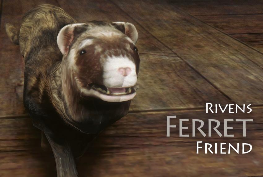 Rivens Ferret Friend