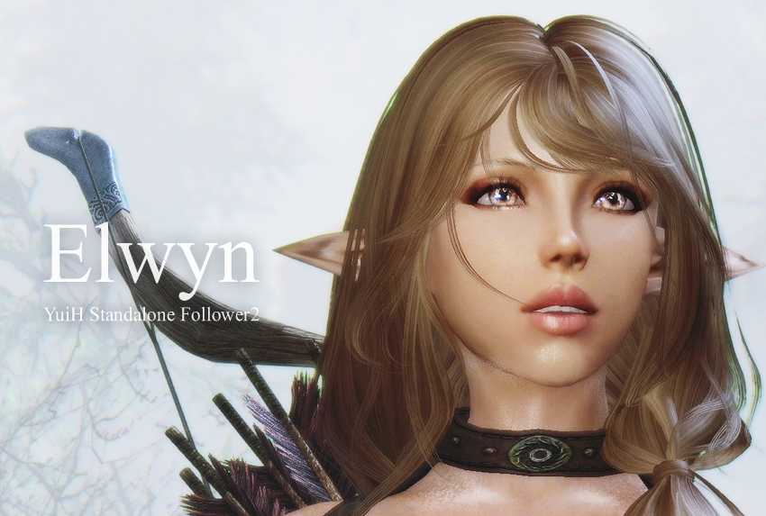Elwyn – YuiH Standalone Follower