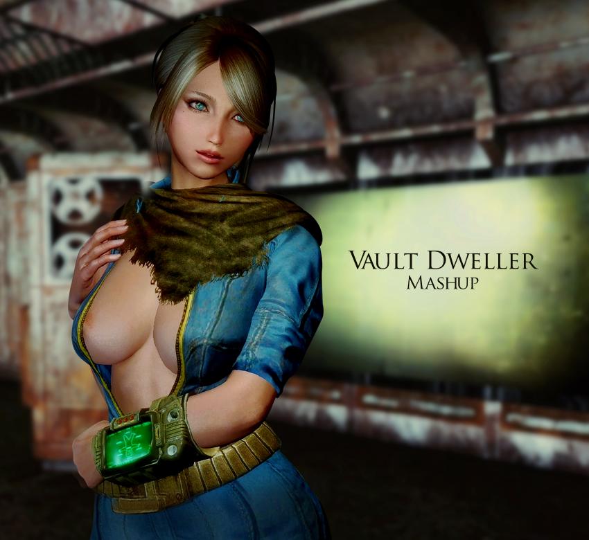 Vault Dweller Mashup