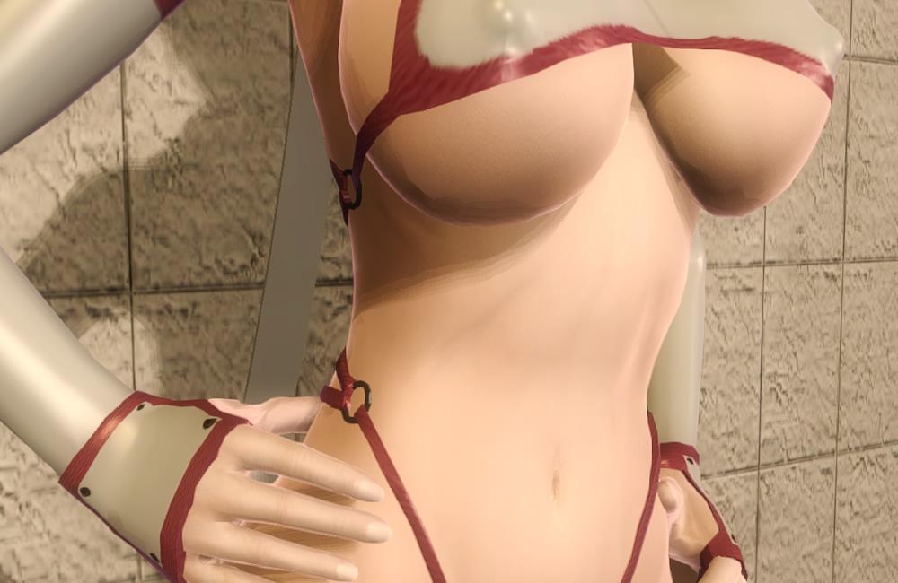 Sexy-Kunoichi-Armor-Set-for-HGEC6