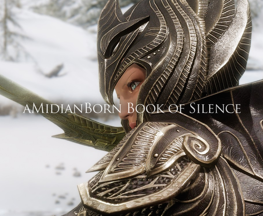 aMidianBorn Book of Silence