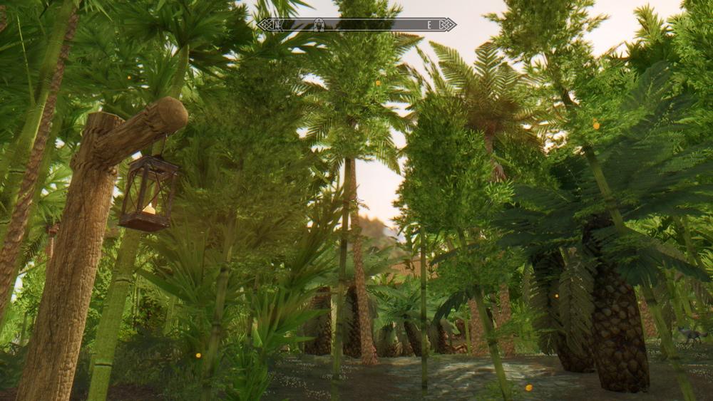 Tropical-Skyrim13