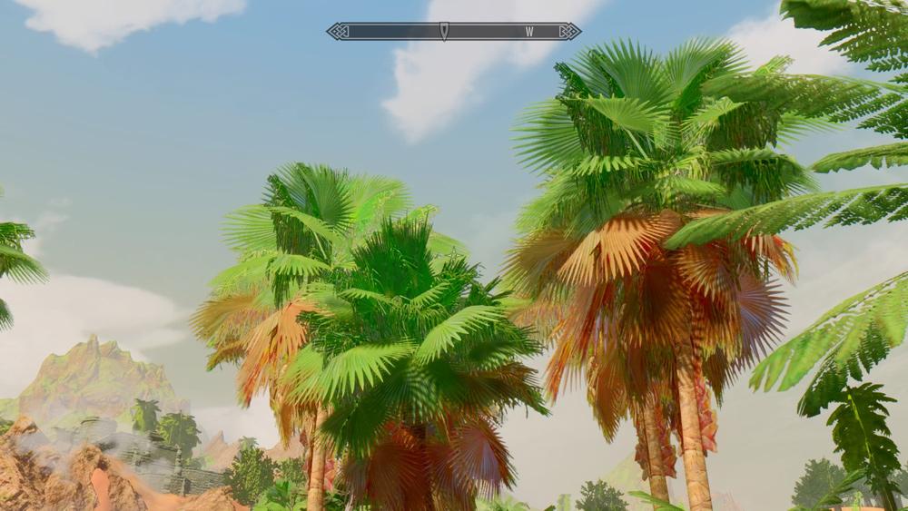 Tropical-Skyrim4