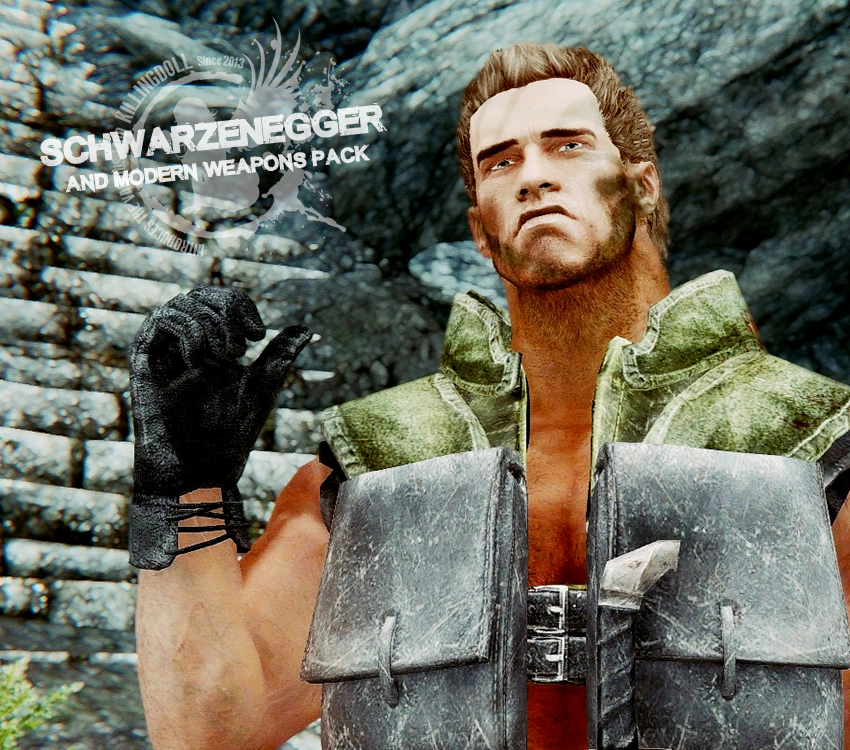 SCHWARZENEGGER and Modern Weapons Pack