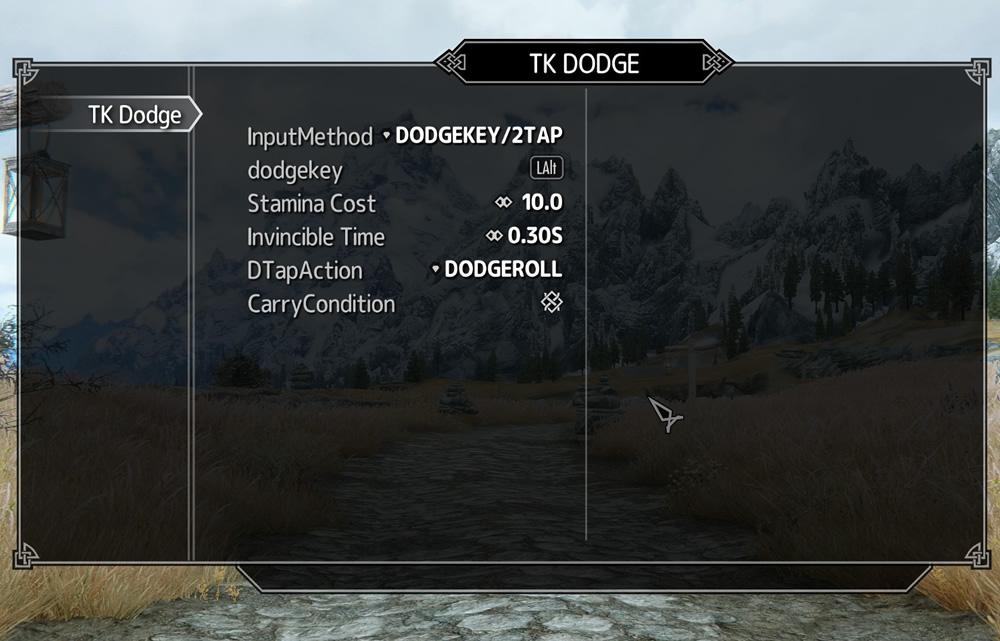 tk-dodge4