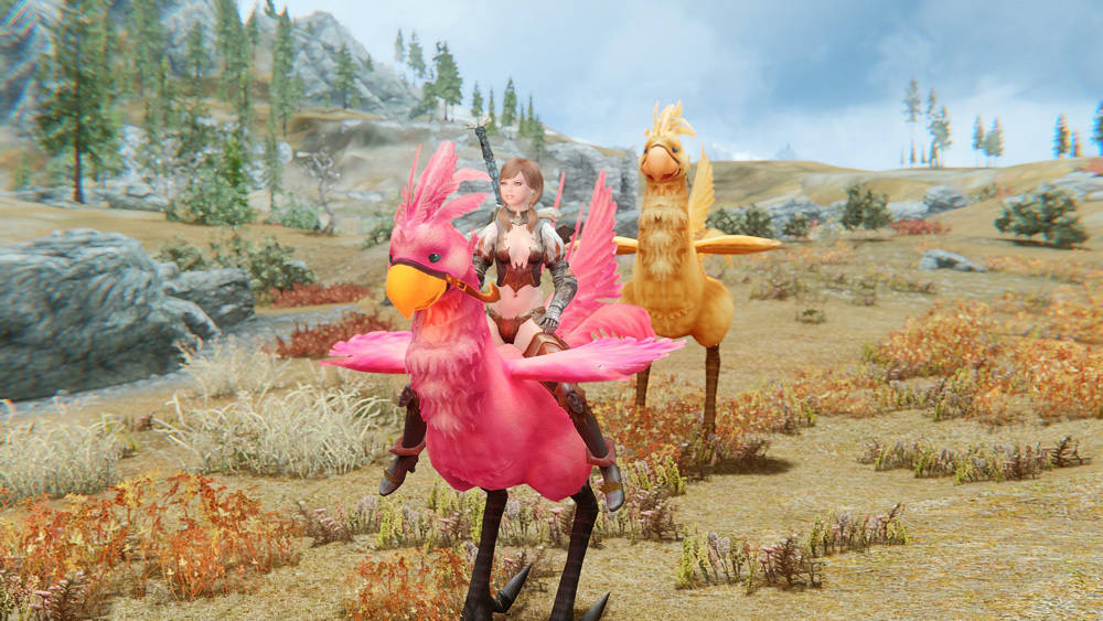 chocobos-mounts-and-followers5