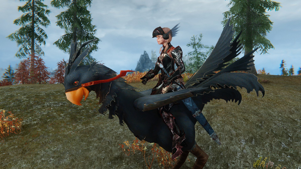 chocobos-mounts-and-followers8