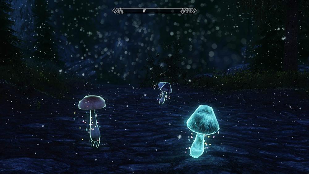 mushroom-followers2
