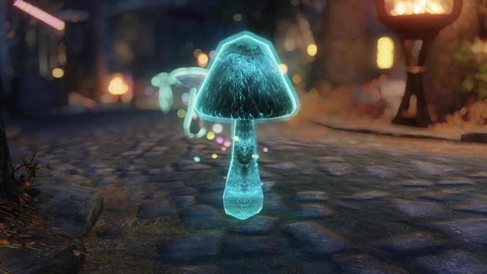 mushroom-followers4