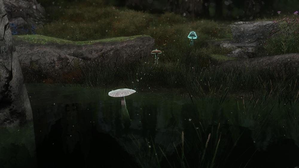 mushroom-followers5