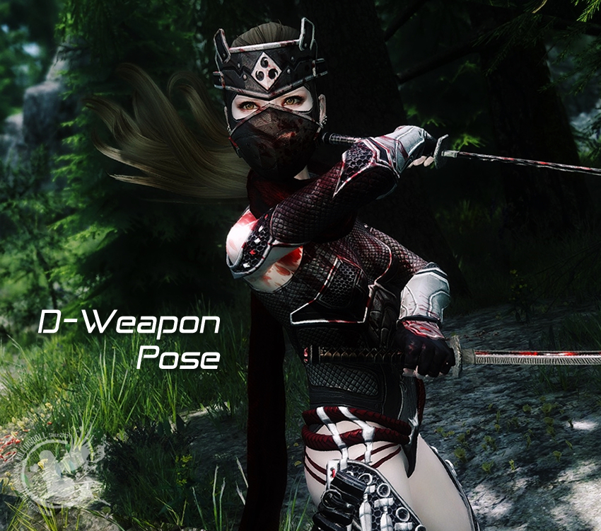 D-WeaponPose
