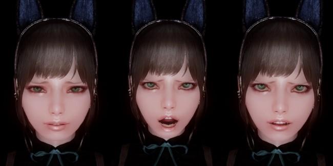 Facial-Expressions-Project-skyrim3