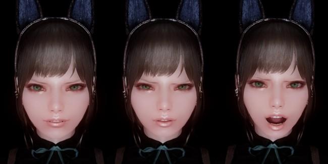 Facial-Expressions-Project-skyrim8