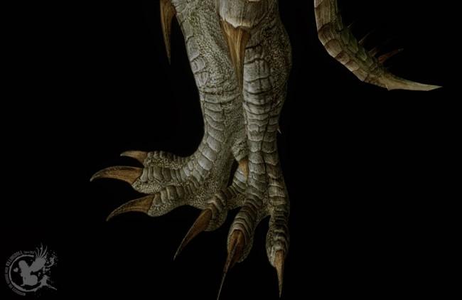 Monster-Dragon-Armor3