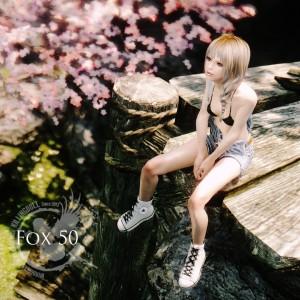 fox50-skyrim