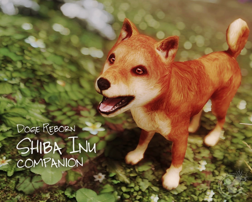Doge Reborn – Shiba Inu companion
