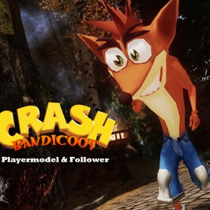 Crash Bandicoot Playermodel and Follower