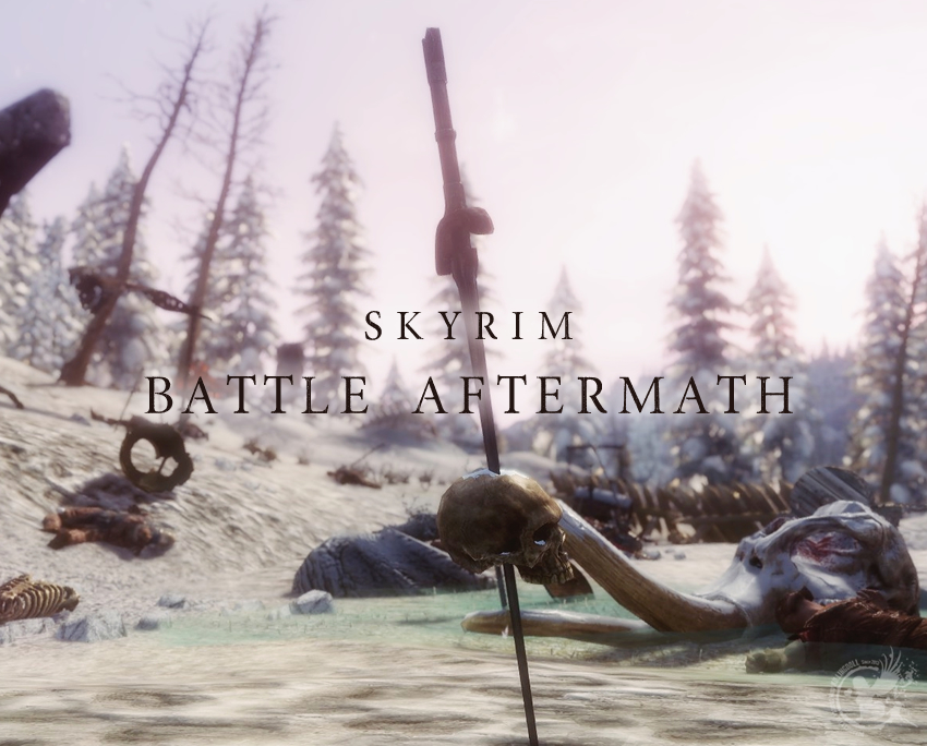 Skyrim Battle Aftermath