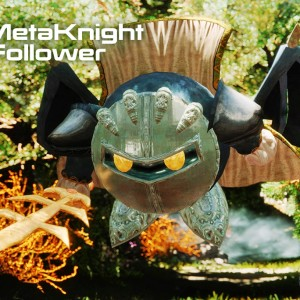 MetaKnight Follower