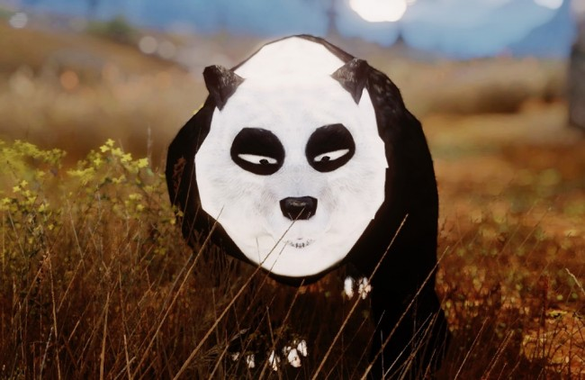 panda-ranma2