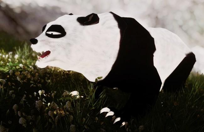 panda-ranma4