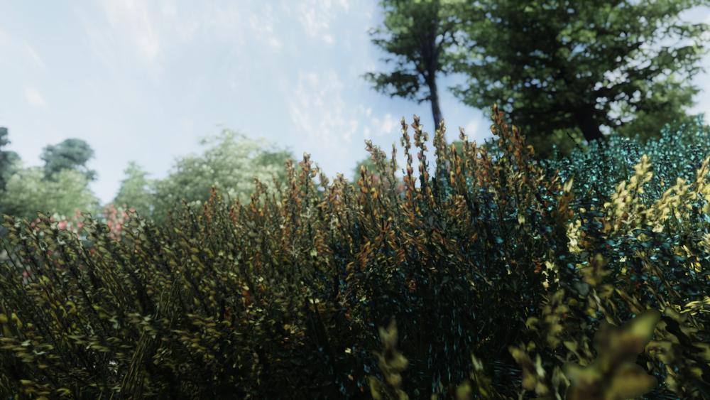 Cinematic-ENB-for-Oblivion2