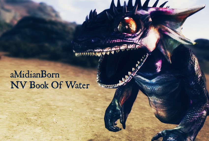 aMidianBorn NV Book Of Water