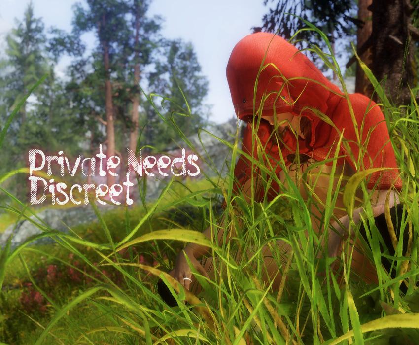 Private Needs Discreet
