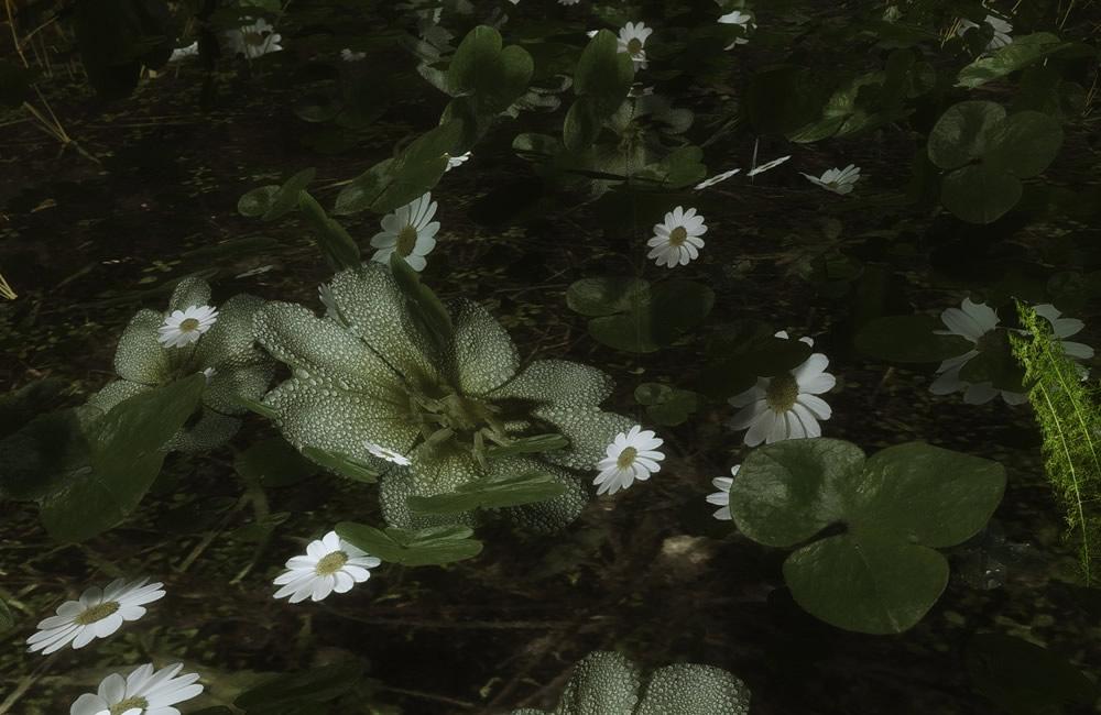 Renthal-HD-Flora7