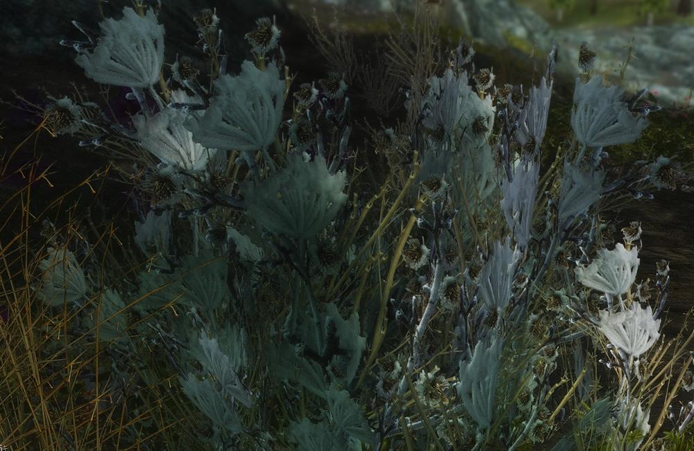 Renthal-HD-Flora9