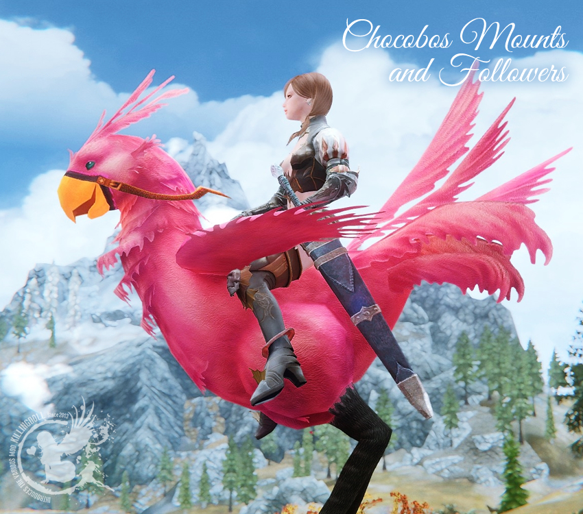 Chocobos Mounts and Followers