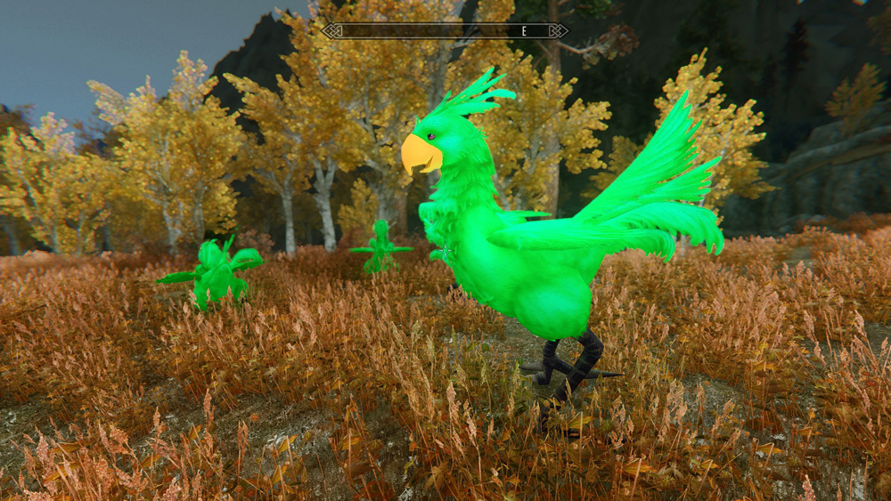 chocobos-mounts-and-followers6