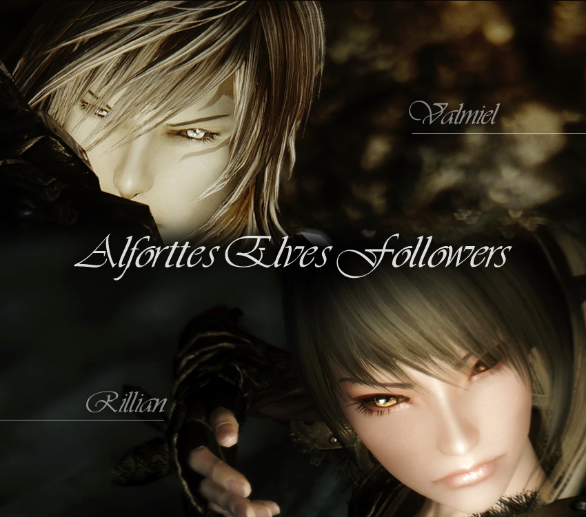 Alforttes Elves Followers
