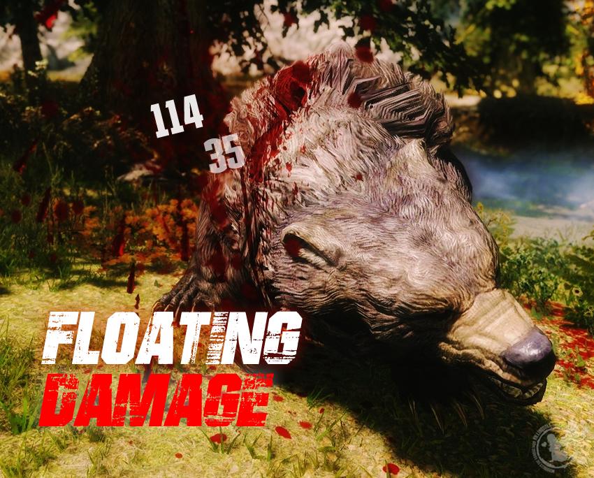 Floating Damage