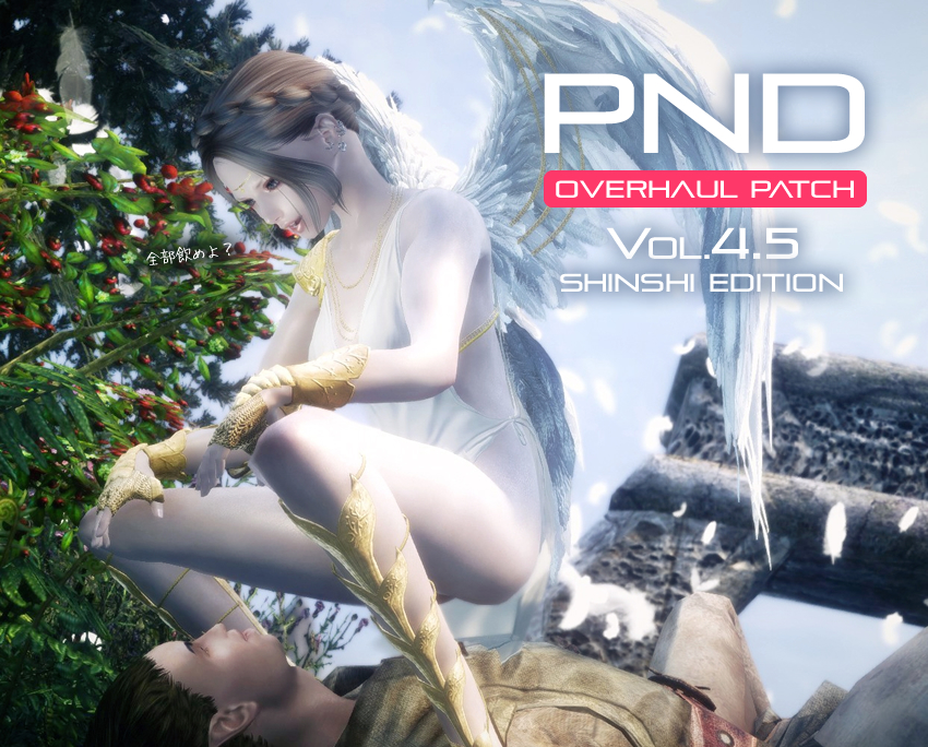 PND Overhaul Patch Vol4.5 Hentai Edition