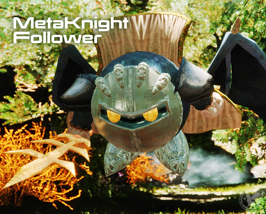 MetaKnight Follower