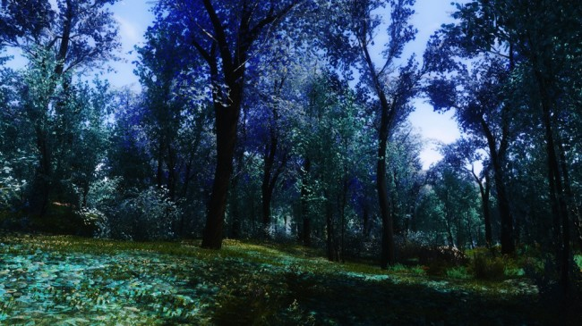 The-Blue-Forest10