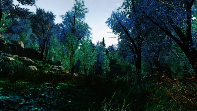 The-Blue-Forest2