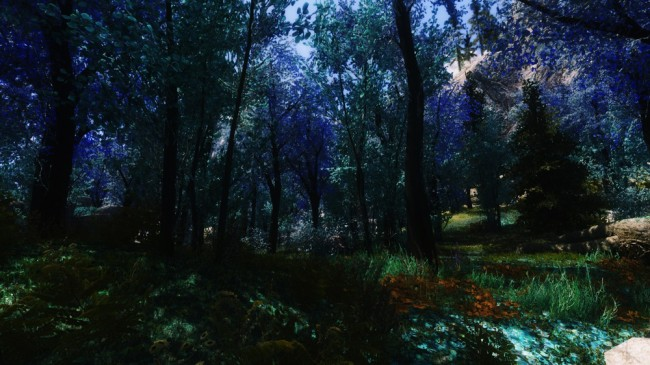 The-Blue-Forest8