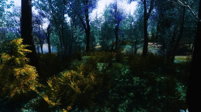 The-Blue-Forest9